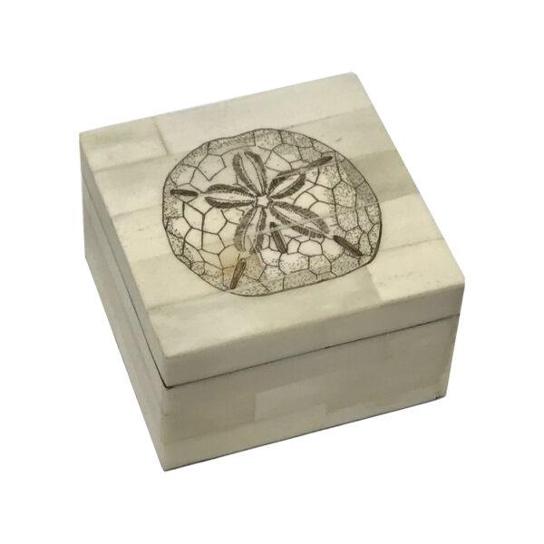 Scrimshaw Boxes Sea Creatures 3-1/4″ Sand Dollar Etched Scrimshaw Bone Box Antique Reproduction