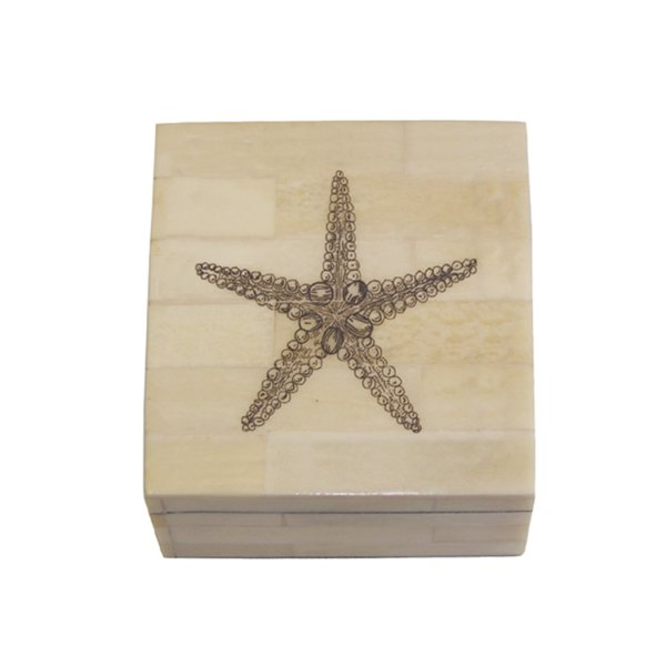 Scrimshaw Boxes Sea Creatures 3-1/4″ Etched Sea Star Scrimshaw Bone Box Antique Reproduction with Lift-Off Lid