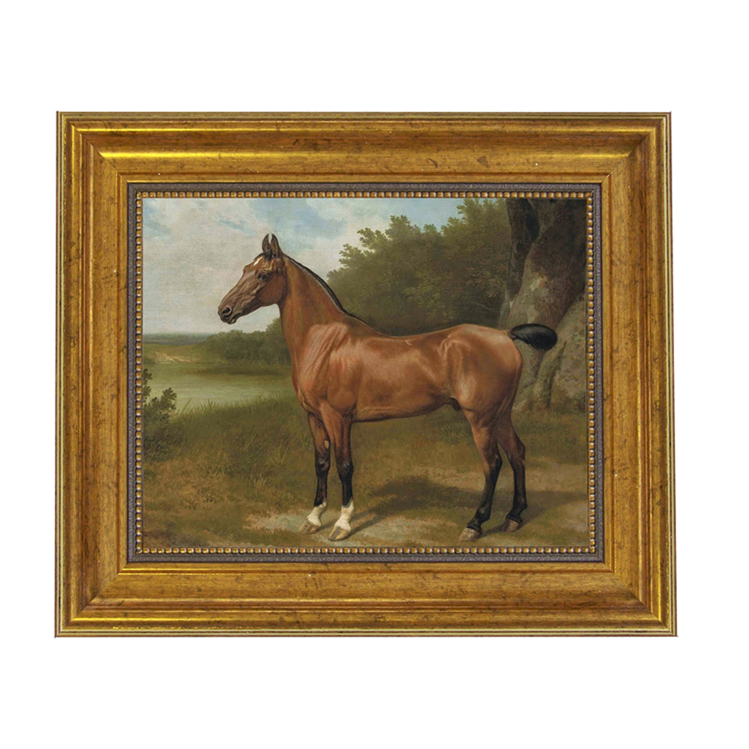 Horse In Landscape Framed Oil Painting Print On Canvas In Antiqued Gold Frame An 8 X 10 Framed To 11 1 2 X 13 1 2 Schooner Bay Company